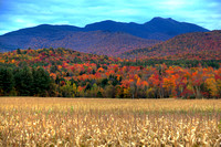 Mt Mansfield, Foliage, Jeffersonville, VT
